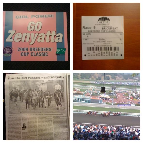 Zenyatta - Breeder Cup Classic