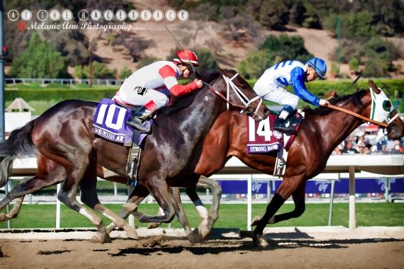 TripleCrown Races